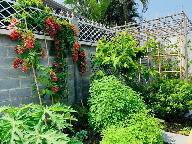 Khu vườn 720m2 đẹp như resort thu nhỏ người chồng tặng vợ ở Đồng Nai - 7