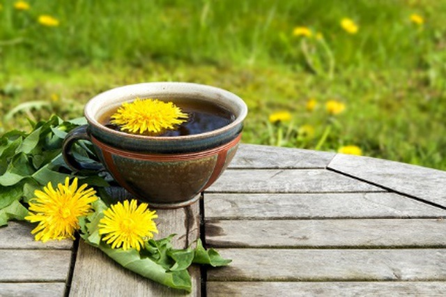Lợi ích tuyệt vời của trà bồ công anh đối với sức khỏe và làn da - 2