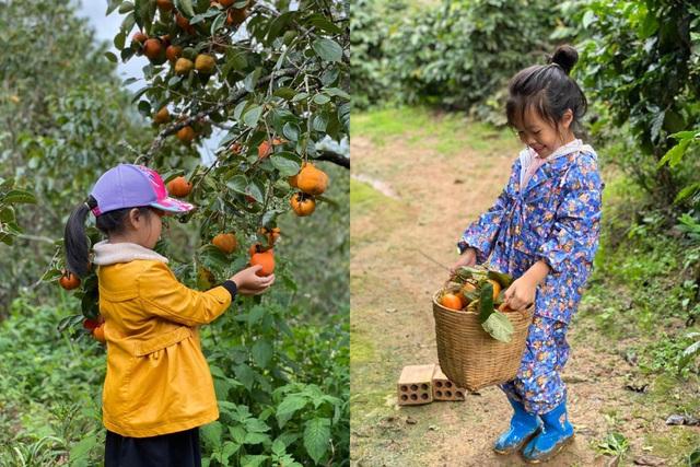 Mẹ đơn thân bỏ phố về rừng, thuê đất làm xưởng chế biến nông sản ở Đà Lạt - 4