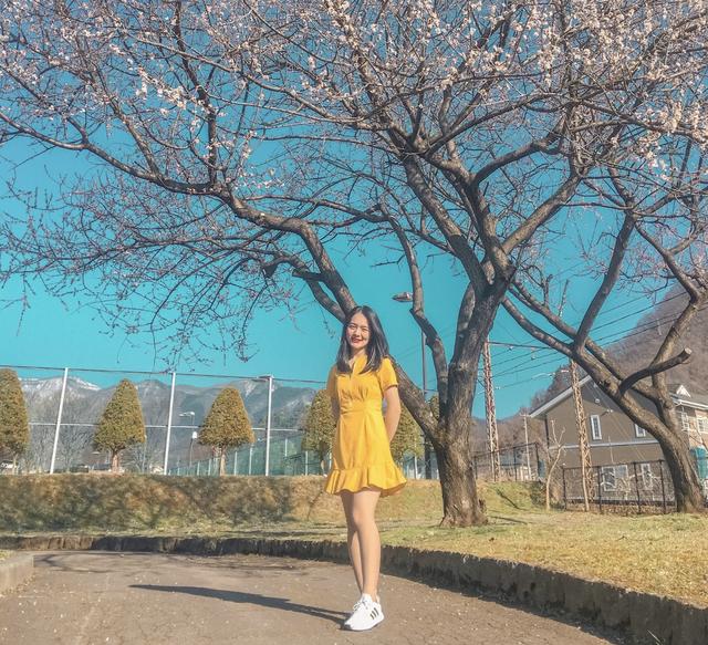 Hot girl ĐH Mở Hà Nội từ bỏ lời mời làm việc tại Nhật Bản để trở về trường - 1