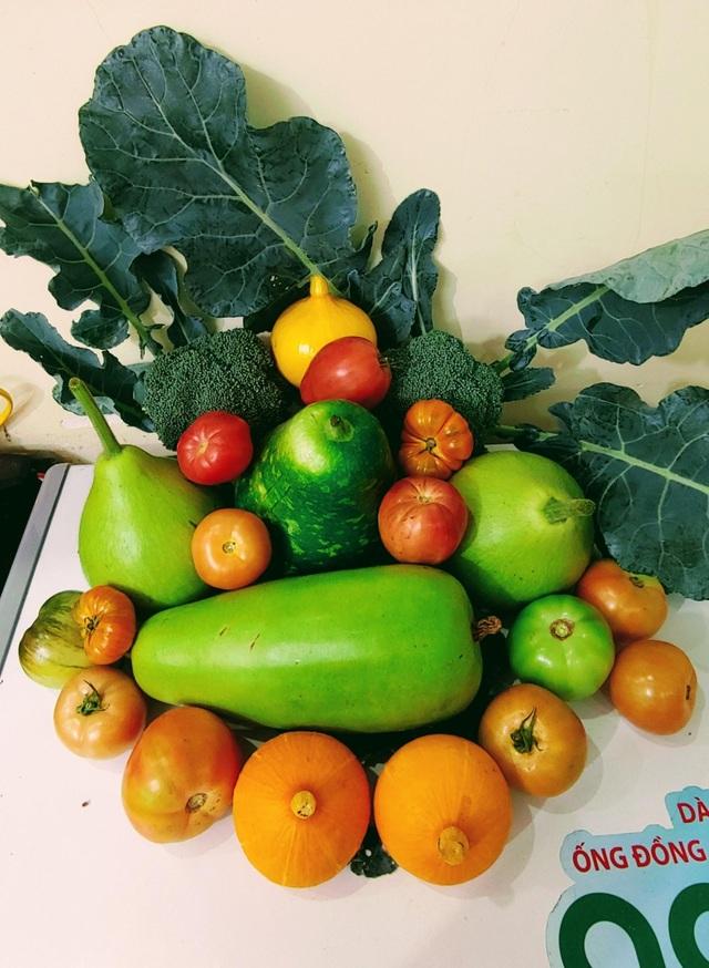 Mẹ đảm Hải Phòng vác đất lên sân thượng, tự tạo nông trại hữu cơ xanh tốt - 11