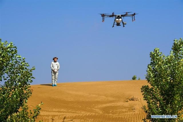 Hành trình 3 thập kỷ phủ xanh kỳ diệu sa mạc rộng thứ 7 Trung Quốc - 6
