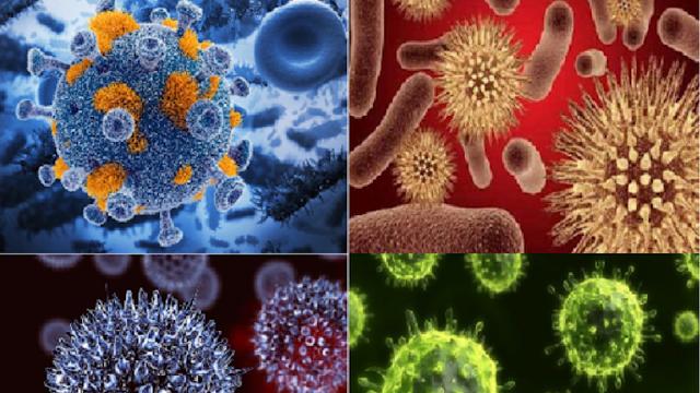 Những căn bệnh nguy hiểm nhất con người từng đối mặt trong quá khứ - 1