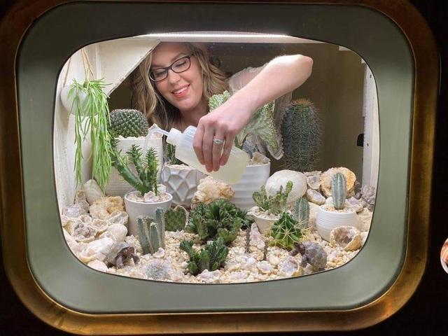 Cô gái biến tivi cũ kỹ thành khu vườn xương rồng độc đáo - 2
