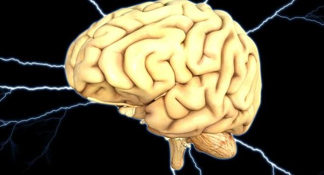 Bệnh não kì lạ chưa có phương pháp điều trị xuất hiện ở Canada - 1