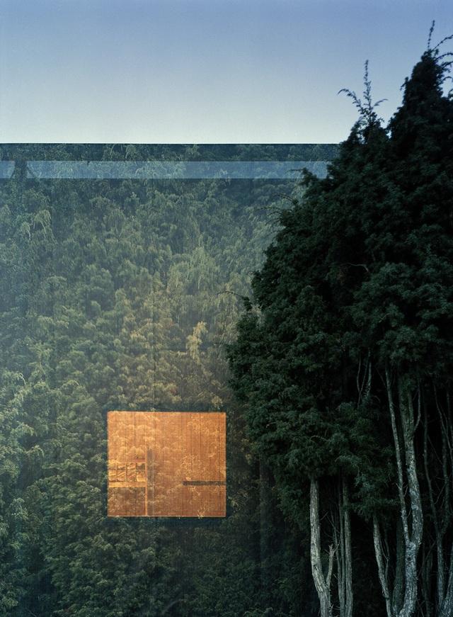 Nhà tàng hình giữa rừng cây với hiệu ứng nhân đôi mặt tiền - 5