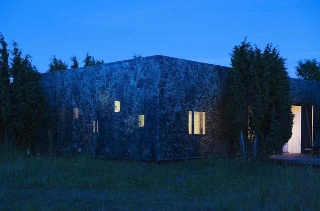 Nhà tàng hình giữa rừng cây với hiệu ứng nhân đôi mặt tiền - 4
