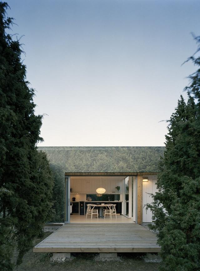 Nhà tàng hình giữa rừng cây với hiệu ứng nhân đôi mặt tiền - 3