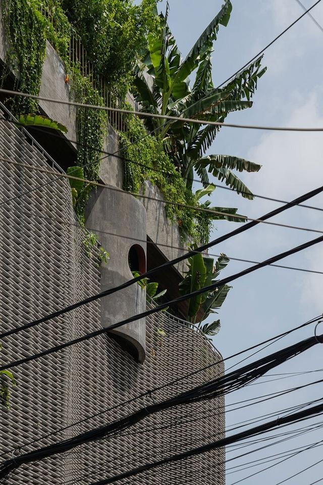 TP.HCM có một condotel xanh giữa lòng phố thị - 2