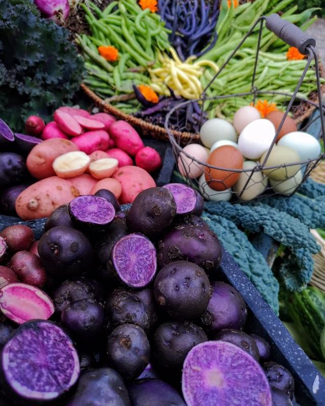 Cuộc sống mơ ước của đôi bạn thân rủ nhau về quê trồng rau, nuôi gà - 7