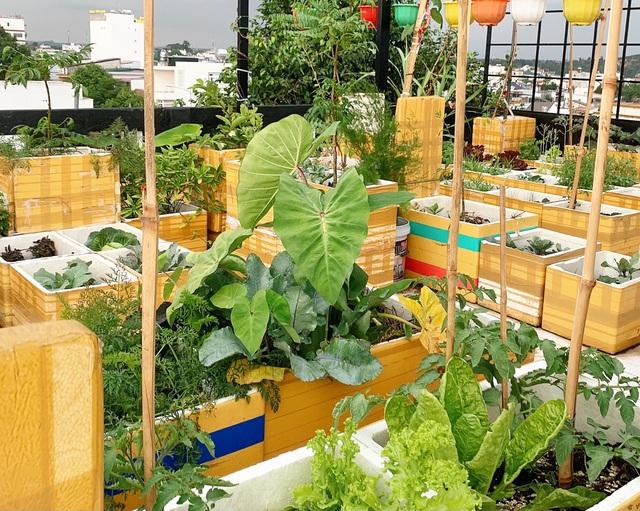 Mẹ đảm ở Đắk Lắk biến sân thượng thành studio nông trại đẹp mê - 2