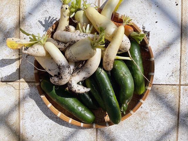 Mẹ đảm ở Đắk Lắk biến sân thượng thành studio nông trại đẹp mê - 4
