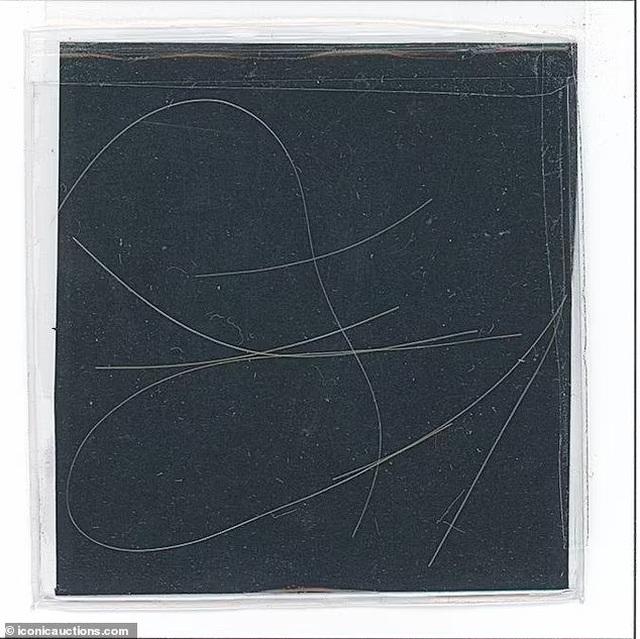 6 sợi tóc có giá... 325 triệu đồng - 2