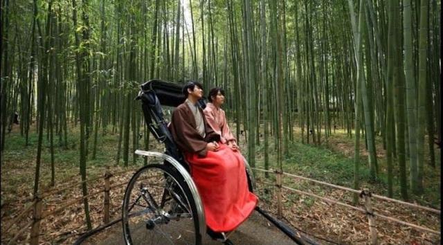 Lạc lối trong rừng tre Arashiyama - niềm tự hào của cố đô Kyoto - 5