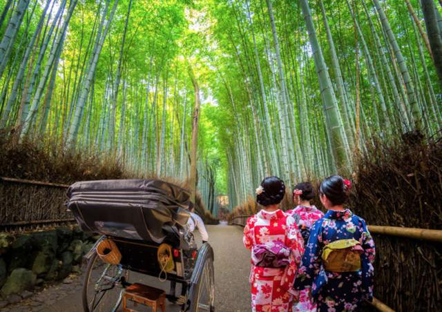 Lạc lối trong rừng tre Arashiyama - niềm tự hào của cố đô Kyoto - 4