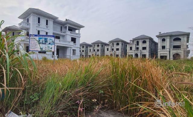 Những khu biệt thự trăm tỷ bỏ hoang ở Hà Nội có bị đánh thuế? - 2