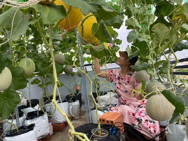 Vườn 10m2 trĩu trịt rau, trái của bà mẹ 4 con thức khuya, dậy sớm - 5