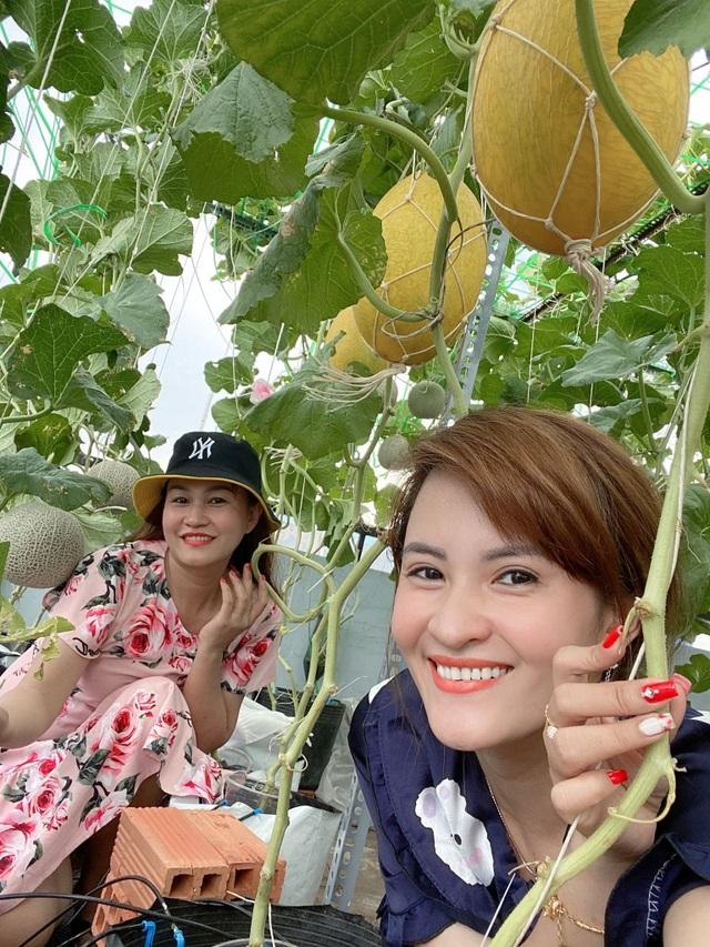 Vườn 10m2 trĩu trịt rau, trái của bà mẹ 4 con thức khuya, dậy sớm - 6