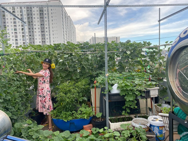 Vườn 10m2 trĩu trịt rau, trái của bà mẹ 4 con thức khuya, dậy sớm - 8