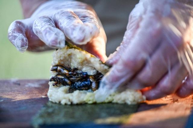 Ve sầu ngủ vùi 17 năm dưới đất… thành món sushi có một không hai - 1