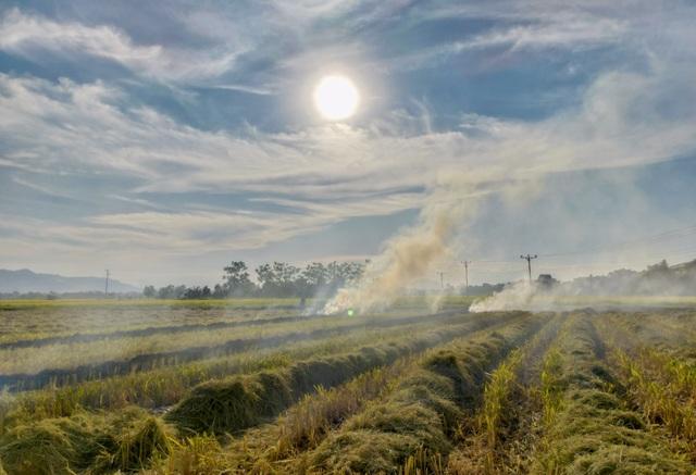 Hà Nội lại vào mùa đốt rơm, ngột ngạt đến tắc thở vì khói bụi - 9