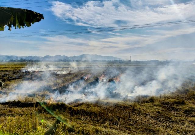 Hà Nội lại vào mùa đốt rơm, ngột ngạt đến tắc thở vì khói bụi - 1