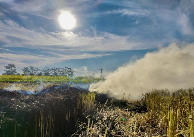 Hà Nội lại vào mùa đốt rơm, ngột ngạt đến tắc thở vì khói bụi - 5