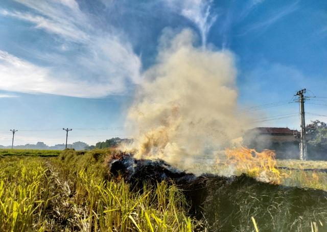 Hà Nội lại vào mùa đốt rơm, ngột ngạt đến tắc thở vì khói bụi - 6