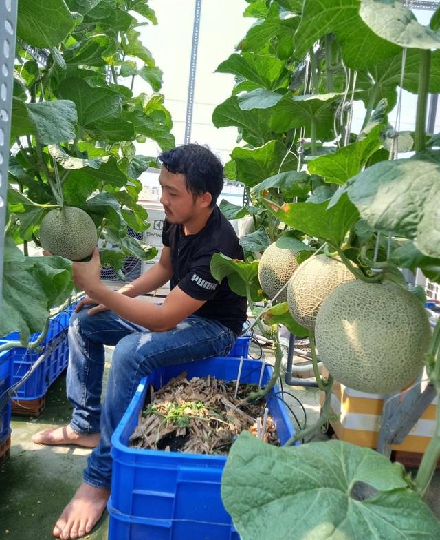 Cả gia đình ở Sài Gòn thỏa thích ăn trái cây nhờ khu vườn trên không - 8