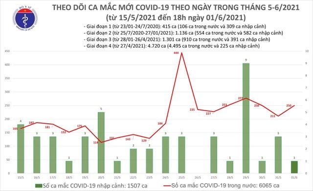 Tối 1/6, Bộ Y tế xác nhận 90 ca Covid-19 ở 10 tỉnh thành - 1