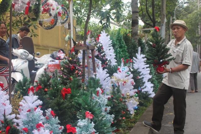 Thông Noel được bày bán tại nhiều tuyến đường