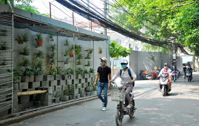 """Tương tự như ở phố Phó Đức Chính, một con đường nằm trong ngõ 58 Trần Bình cũng """"lột xác"""" nhờ vườn hoa của nhóm các bạn sinh viên này."""
