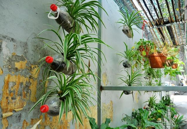 Đàm Thanh Tùng cho biết đây là vườn hoa đầu tiên mà mình bắt tay thực hiện. Ý tưởng xây dựng vườn hoa này là một trong những thử thách trong một cuộc thi mà Tùng cần phải vượt qua.
