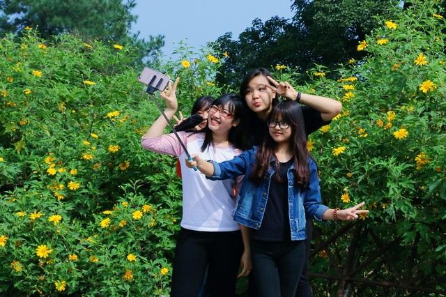 Một nhóm bạn trẻ ở Hà Nội thích thú chụp hình với hoa dã quỳ