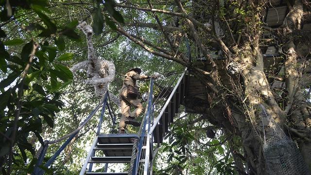 """[Ảnh 360 độ] Kỳ dị nhà trên... cây """"chẳng giống ai"""" ở Hà Nội - 1"""