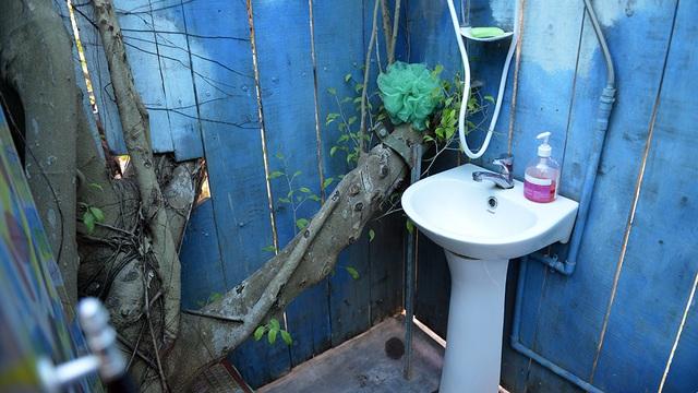 Nhà vệ sinh cũng... trên cây.