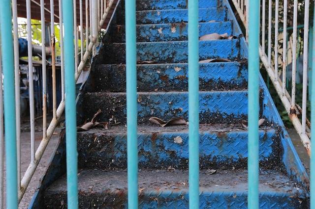 Các lối cầu thang cửa đóng then cài đã lâu, trông như phế tích.