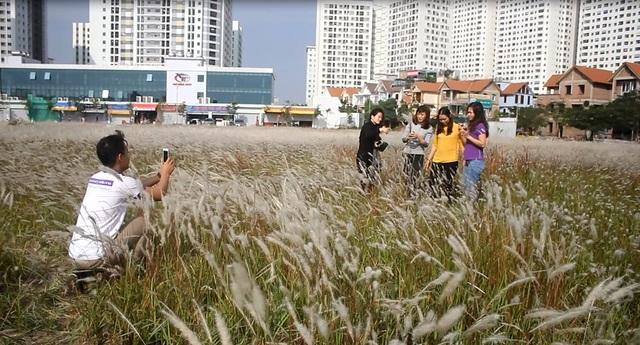 Nhiều bạn trẻ thích thú ghi lại những khoảnh khắc bên cánh đồng cỏ tranh tuyệt đẹp.