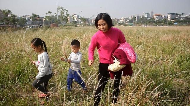 Các cháu nhỏ cũng tỏ ra thích thú khi được theo bố mẹ đến cánh đồng cỏ.