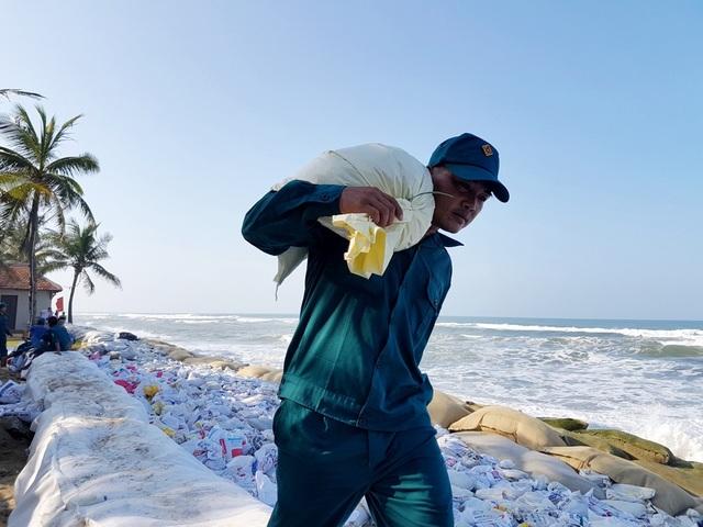 Việc gia cố bờ biển Cửa Đại bắt đầu từ thứ 7 tuần qua, đến nay đã có gần 3 ngàn khối cát đã được đổ xuống