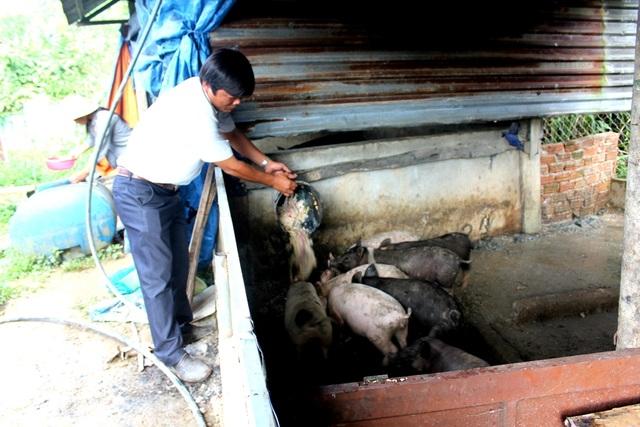 Chuồng nuôi heo (lợn) của thầy cô ở vùng cao Tây Giang