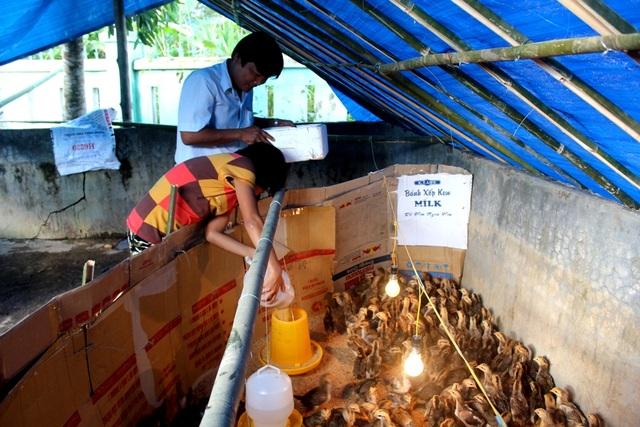 Mô hình nuôi heo, nuôi gà gây quỹ của trường PTDTBT THCS Nguyễn Văn Trỗi