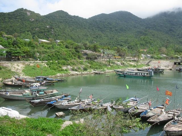 Một góc khu dự trữ sinh quyển Cù Lao Chàm