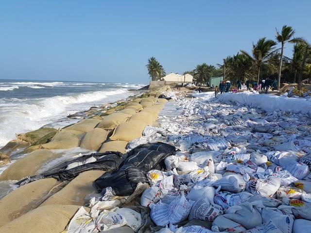 Bãi biển Cửa Đại bị sạt lở nặng có nguyên nhân từ việc khai thác khoáng sản bừa bãi ở lưu vực Vu Gia – Thu Bồn