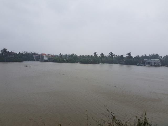 Nước lũ ngập trắng đồng ở thị xã Điện Bàn
