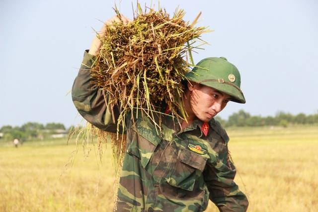 Chiến sĩ Trịnh Vĩnh Đạt giúp nông dân chuyển lúa lên bờ