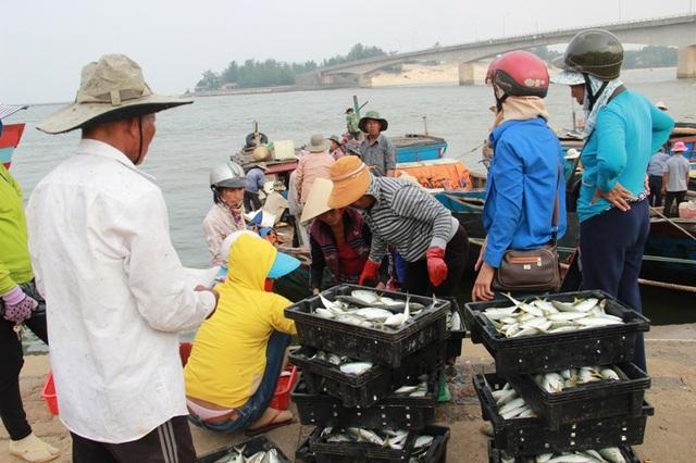 Cá nục sống ở tầng nổi được xác định là an toàn để sử dụng