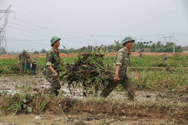 Các chiến sĩ Trung đoàn 19, Sư đoàn 968 cùng giúp dân tham gia dọn bèo trên ruộng