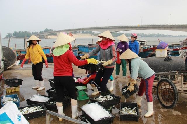 Sự cố môi trường đã ảnh hưởng đến phần lớn ngư dân và lao động biển trong thời gian dài