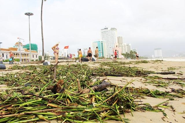 Bãi biển phía trước Quảng trường 2 tháng 4 TP Nha Trang, lúc 9h30 ngày 3/11